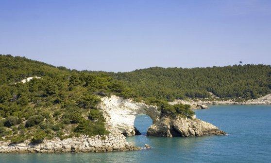 Signa Maris: in Puglia col vento in poppa!