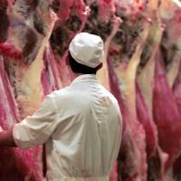 """Carne rossa e tumore, Coldiretti: """"A rischio 180mila posti di lavoro"""""""