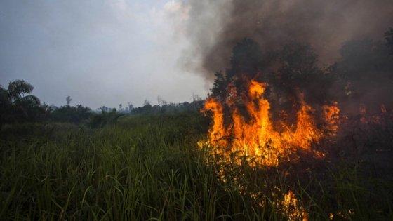 L'Indonesia si avvia a diventare il terzo più grande inquinatore al mondo dell'aria