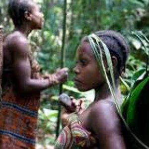"""WWF risponde a Survival: """"Venite anche voi in Camerun con noi a fermare il bracconaggio"""""""