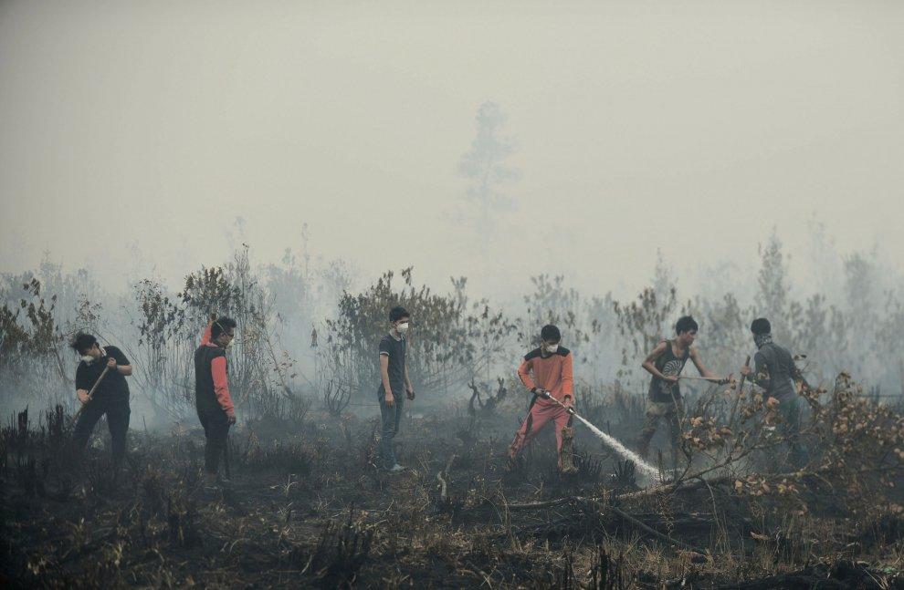 Dall'Indonesia alla Thailandia, la nube gialla minaccia il sud est asiatico