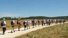 Puglia, 80 km a piedi  tra le comunità virtuose con 20 guide e 4 asinelli  di MONICA RUBINO