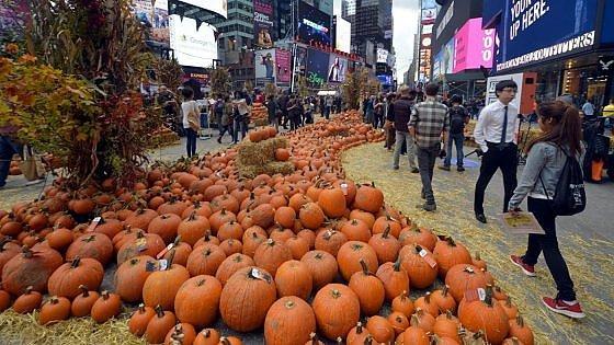 Le Zucche Di Halloween Inquinano Gli Usa Le