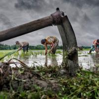 Lavorare per battere la povertà: le professioni più dure del mondo