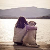 Un cane fa bene: tiene lontane asma e allergie