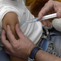 """Lorenzin: """"Nessun piano in atto per vietare entrata a scuola dei bambini non vaccinati"""""""
