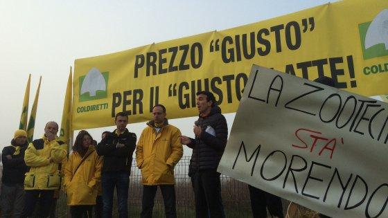 Coldiretti lancia la 'guerra del latte': gli allevatori protestano per il crollo dei prezzi