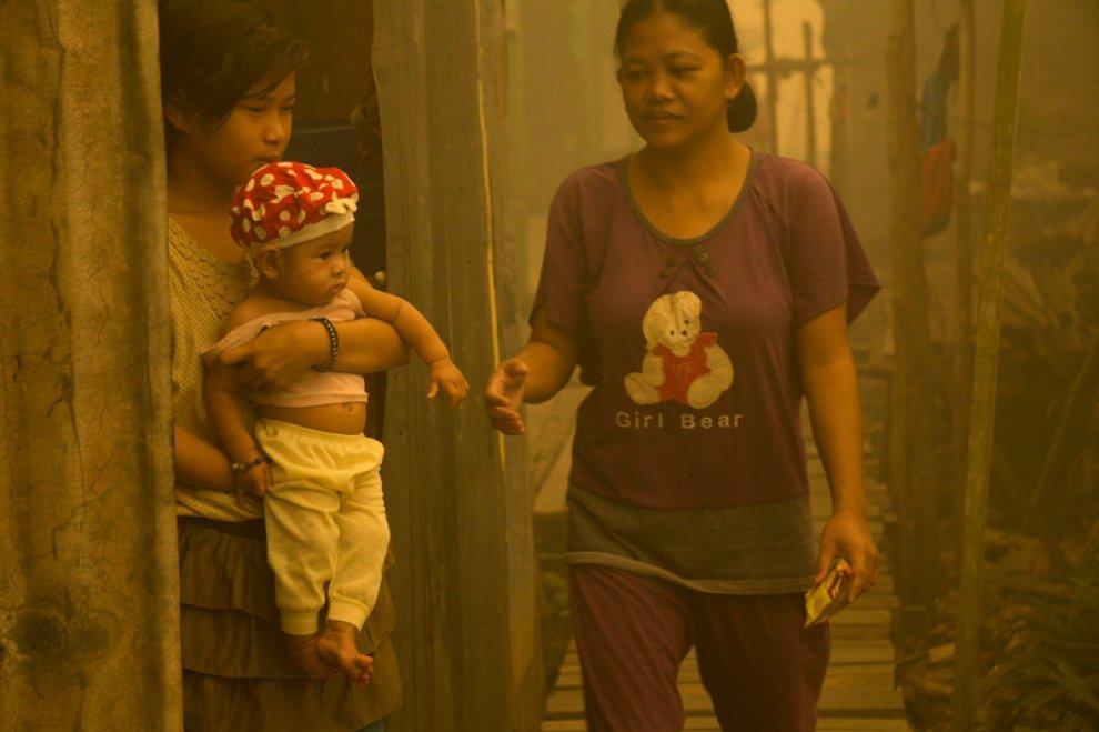 """Indonesia, Greenpeace: """"Nuovi incendi per far largo alle piantagioni di olio di palma"""""""