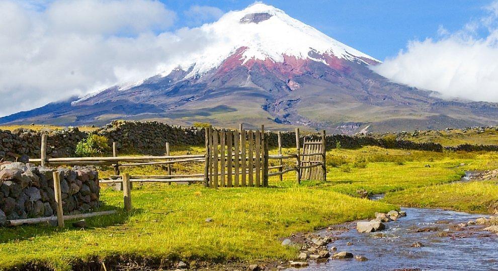 Ecuador. Biodiversità e cacao