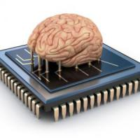 Ecco Annabell, il cervello artificiale che ha imparato a parlare