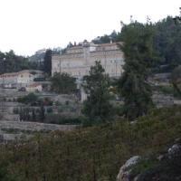 A Betlemme in arrivo un nuovo muro: a rischio il vigneto più antico