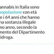 L'uso di marijuana in Italia e nel mondo: i dati