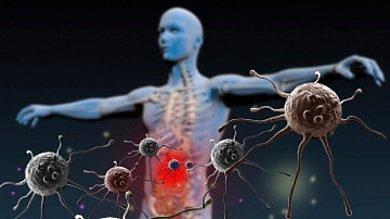 La solitudine fa male: influenza i geni  e indebolisce le difese immunitarie