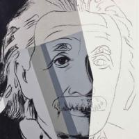 Un secolo di relatività, Albert Einstein: da scienziato ad icona pop