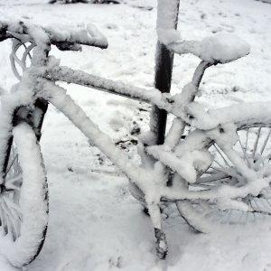Targa e bollo sulla bici, scoppia il caso