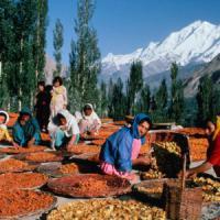 Fame e cambiamenti climatici: popolazioni montane a rischio