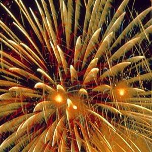 """Gli animalisti: """"I comuni vietino i fuochi d'artificio a Capodanno"""""""