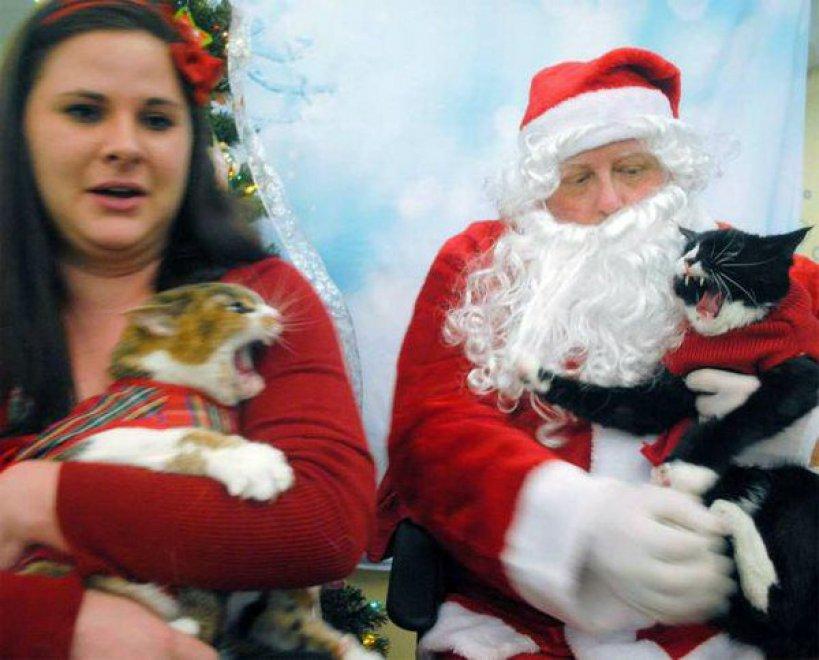 Immagini Stupide Di Natale.Funny Christmas Il Natale Ironico Nelle Foto Piu Strane E Brutte Del Web Repubblica It