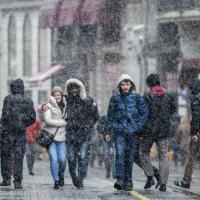 Neve in Messico, primavera a New York: le anomalie climatiche stravolgono l'inverno
