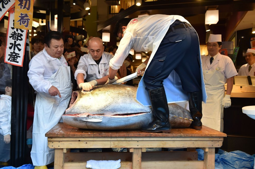 Un tonno da 109mila euro: l'asta d'oro al mercato di Tokyo
