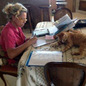 """""""I gatti di Roma"""", un libro dedicato ai """"cittadini non umani"""" della Capitale"""
