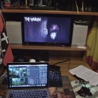 Indie Games, quando un game di successo costa 30 euro