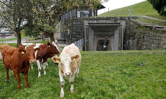 Svizzera. Hotel, musei e caseifici nei bunker della guerra mai combattuta