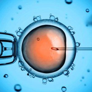 Usa, madre surrogata rifiuta aborto richiesto da genitore biologico
