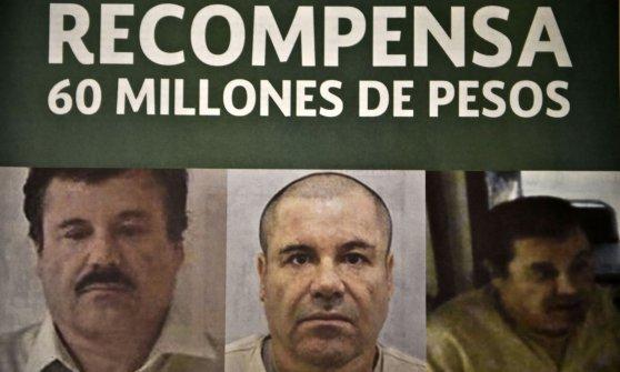 """Messico, arrestato El Chapo Guzman. Il Presidente su Twitter: """"Missione compiuta"""""""