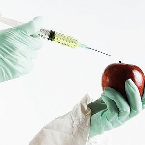 MIPAAF: 21 milioni di euro per le biotecnologie sostenibili