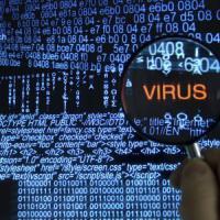 Ecco il virus che si