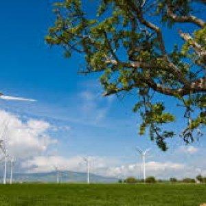 Rinnovabili, nel 2015 nuovo record di investimenti nel mondo
