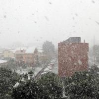 Neve in Abruzzo, la costa imbiancata