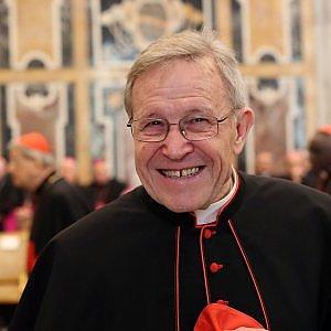 """Il cardinale Kasper: """"Lecita l'obiezione di coscienza sulle leggi contro l'immigrazione"""""""