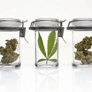 """""""Cannabis contro l'emicrania, riduce gli attacchi"""""""