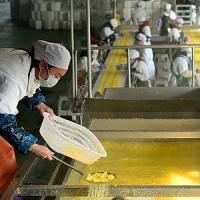 Cina, la crescita rallenta al 6,9 per cento nel 2015