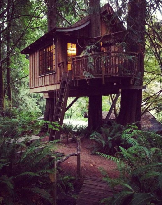 La natura a domicilio le pi belle case sull 39 albero in for Foto belle case