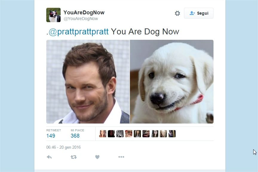 """I make you dog"": l'hashtag su Twitter che ti trasforma in un cane"