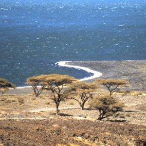 Resti fossili rivelano un antico massacro avvenuto 10mila anni fa