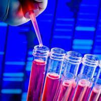 Test genetico in gravidanza, italiano il più efficace al mondo