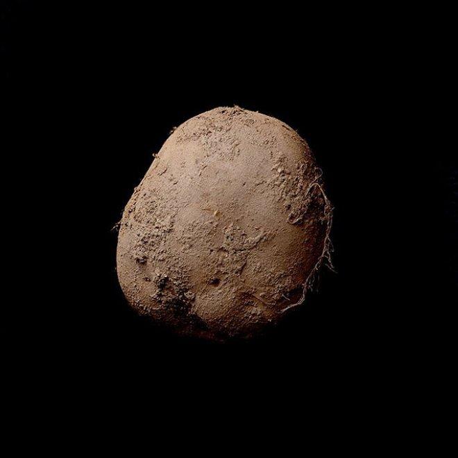 Ritratto di patata, la foto venduta per un milione di euro