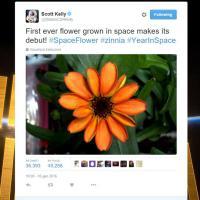 Fiori nello spazio: prima di Kelly 'sbocciarono' i russi