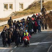 Migranti, Ft: