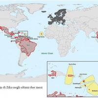 """Virus Zika, primi casi anche in Italia. Gli esperti: """"No contagio diretto da uomo a uomo"""""""