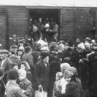 Giornata della memoria: incontri e memoriali per non dimenticare l'orrore della Shoah