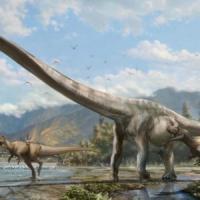 Danze preistoriche: ecco i rituali di corteggiamento dei dinosauri