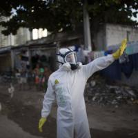 """David Quammen: """"Siamo noi a liberare nuove malattie distruggendo gli ecosistemi"""""""