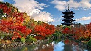 Nara, antica capitale del sakè