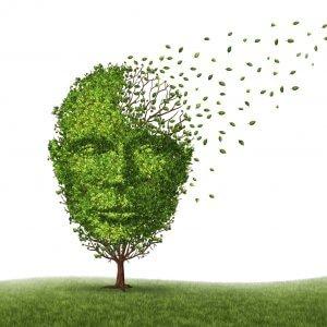 Schizofrenia, la causa in un gene che altera il processo di 'potatura' dei neuroni