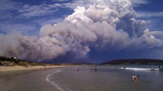 Incendi, alluvioni. Tasmania, un eden improvvisamente fragile